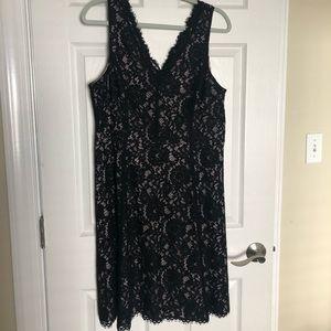 LOFT Lace Dress - Size 12 EUC